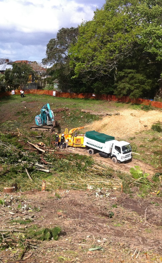 Land Clearing Services Auckland | Coastline Treeworks